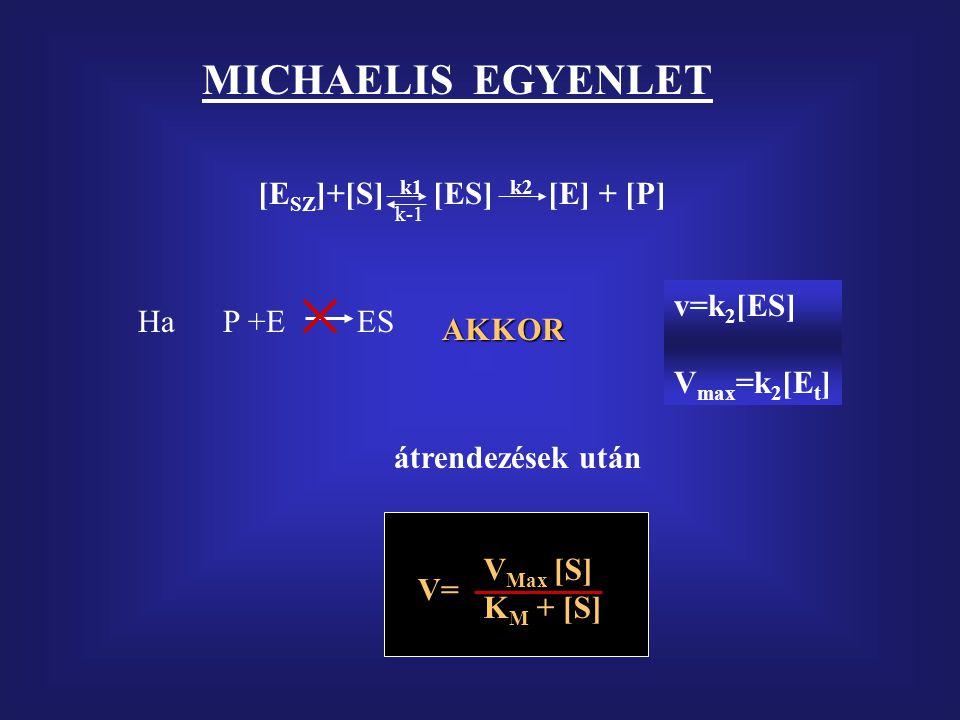 MICHAELIS EGYENLET [ESZ]+[S] k1 [ES] k2 [E] + [P] v=k2[ES] Ha P +E ES